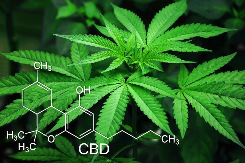 CBD chemical symbols